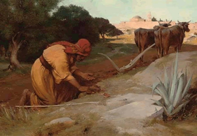 SUY NIỆM CHÚA NHẬT TUẦN XVII THƯỜNG NIÊN  NĂM A 26-07-2020